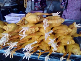 Amber-Colored Coated Chickens 4 Sale 20180401@085326.jpg